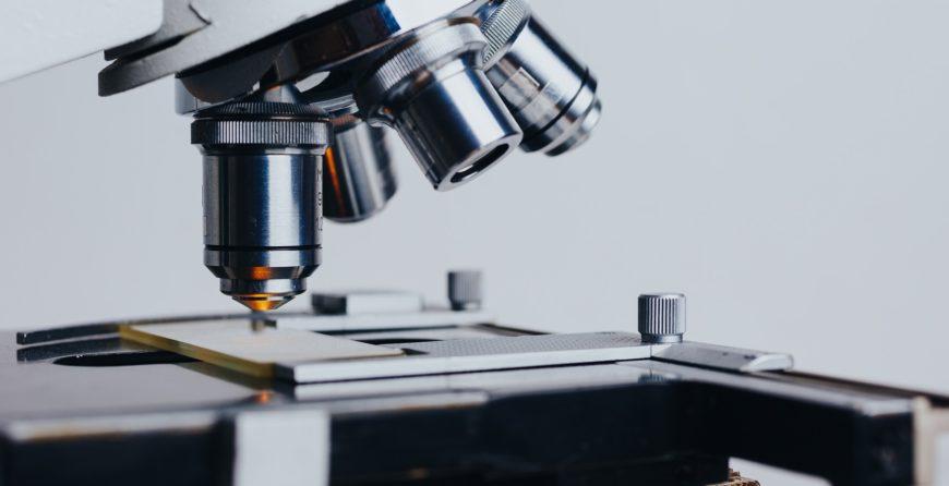 ricercatori veneto ricerca e sviluppo