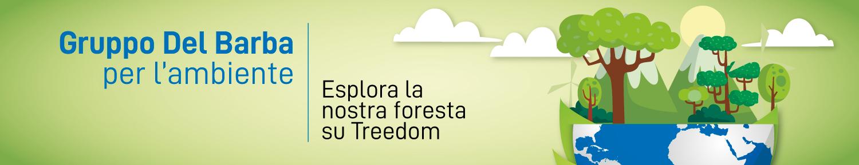 Foresta Gruppo Del Barba Treedom